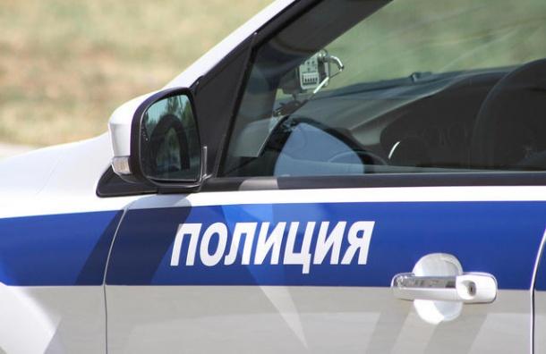Задержан водитель, сбивший на Софийской двух женщин с детьми на руках