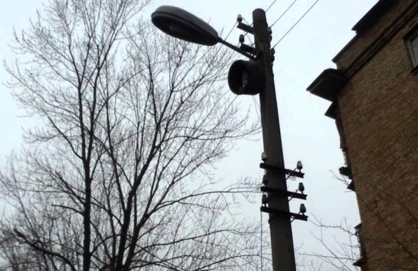 После травмирования ребенка вцентре Петербурга предлагают убрать чугунные фонари
