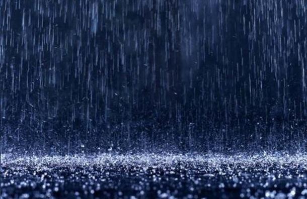 МЧС предупреждает о сильном ветре, ливнях и грозах 7 августа в Петербурге