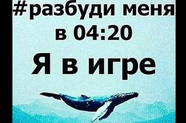 Путин сравнил субийцами кураторов «групп смерти»