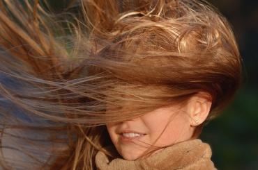 Рабочая неделя в Петербурге начнется с гроз и сильного ветра