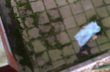 Мужчина выпал из окна в Приморском районе