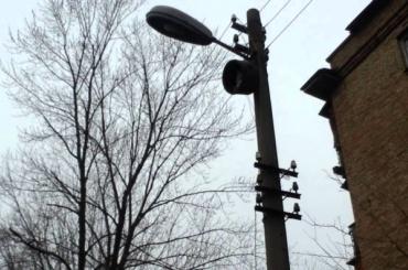 Уличный фонарь упал наголову 7-летнего ребенка вПетербурге