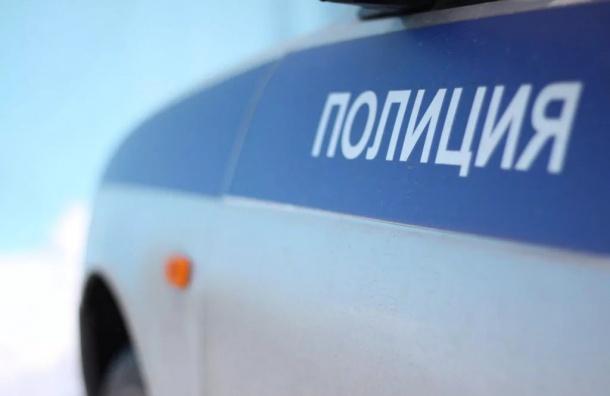 Охранницу ОЖД в Петербурге полапал и ограбил «бомбила»