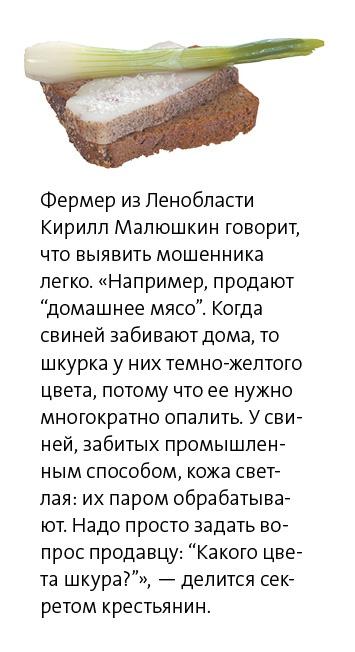 Сало газета