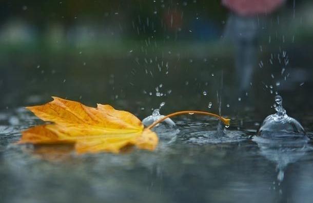 Всередине сентября дождей небыло рекордные десять дней— Главный синоптик Петербурга