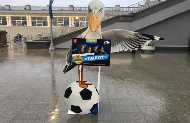 Бакланы указывают болельщикам путь кстадиону наКрестовском