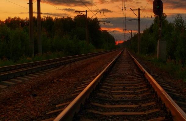 Электричка в Москве насмерть сбила мужчину