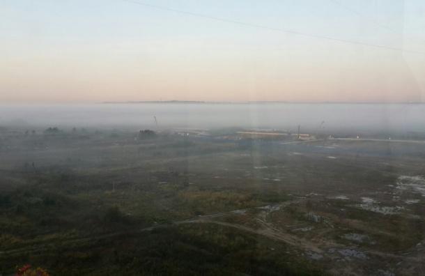 Утренний туман накрыл южные районы Санкт-Петербурга
