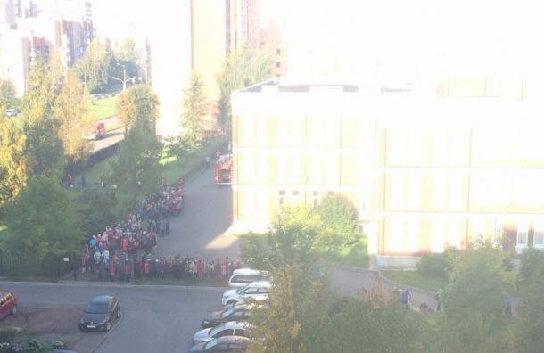 Школу в Петергофе эвакуировали из-за пожара