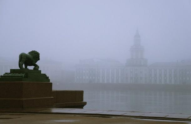 Туман опустится на Петербург ночью 29 сентября