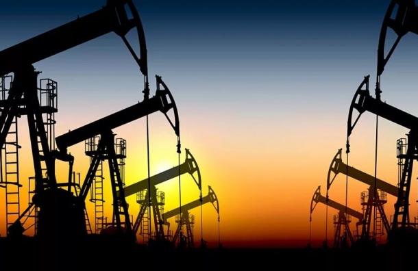 Госдума хочет поделиться с гражданами доходами от добычи нефти