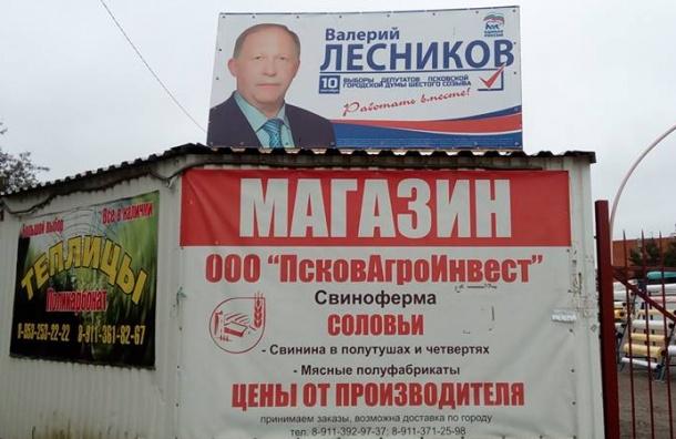 Псковские выборы: купи себе голос