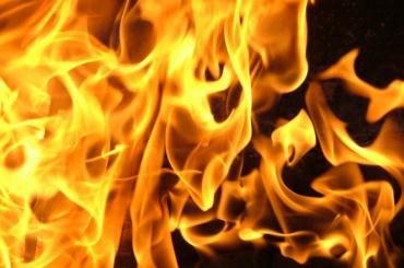 Пожарные тушили квартиру на Дунайском проспекте