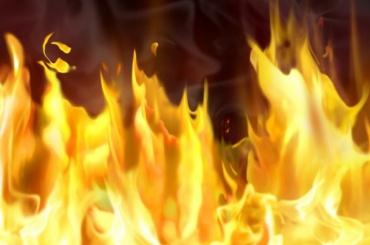 Молодой мигрант сгорел при пожаре вКолпино