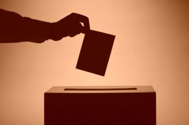 Совфед обвинил США в попытке повлиять на выборы в России