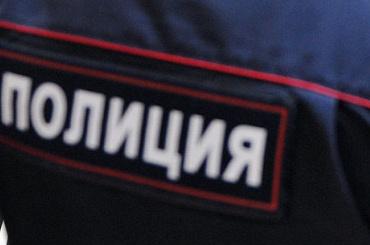 Полиция задержала 130 человек во время незаконной акции на Дворцовой