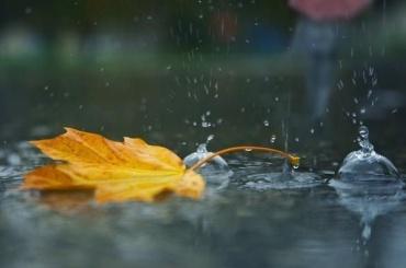 Главный синоптик Петербурга рассказал, когда ждать дождей