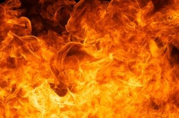 Два трупа обнаружили после пожара в Парголово