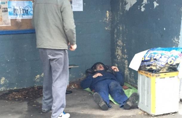 Мужчину сбили на пешеходном переходе в Левашово