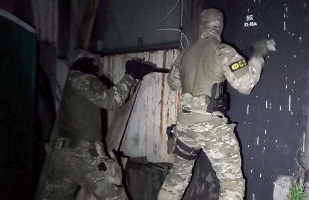 ФСБ задержала в Московском регионе готовивших взрывы террористов ИГ