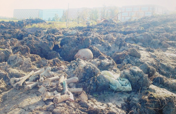 Братскую могилу разрыли при строительстве развязки на Пулковских высотах