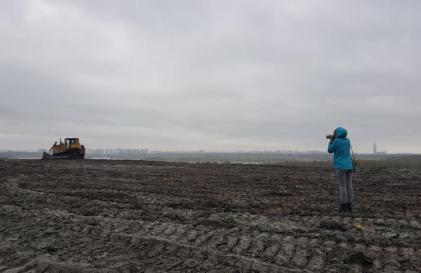 Жителей кварталов от запаха с полигона «Новоселки»  защитят рощей