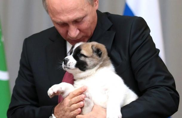 Щенка покличке Верный подарили Путину