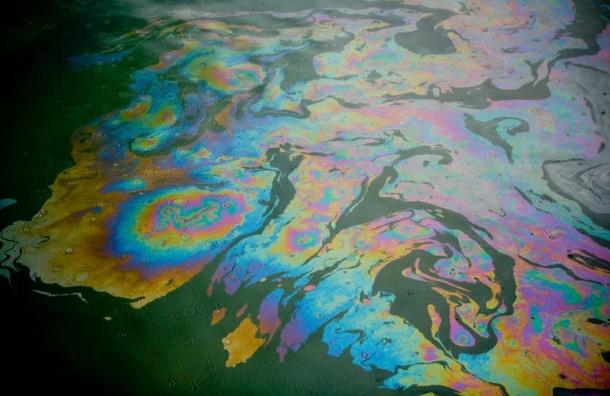 Росприроднадзор установил предполагаемый источник загрязнения реки Славянки