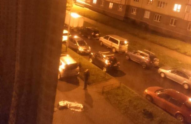 Девочка-подросток разбилась на севере Петербурга