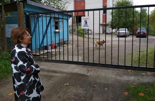 Оксана Дмитриева пытается попасть вБаболовский парк