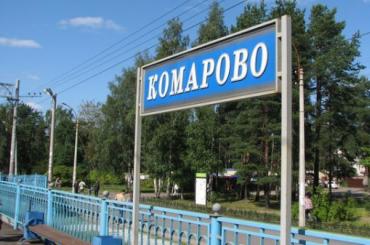 Пикет против закрытия железнодорожного переезда пройдет в Комарово