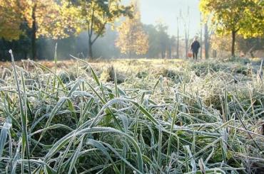 Гидрометцентр рассказал, какой будет зима