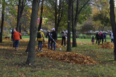 Петербуржцев просят дать оценку осенней уборке города