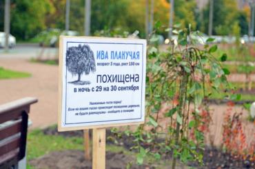 Таблички впамять опохищенных деревьях появились впарке «Озеро Долгое»