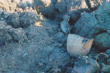 Останки сПулковских высот могут перезахоронить наПавловском кладбище