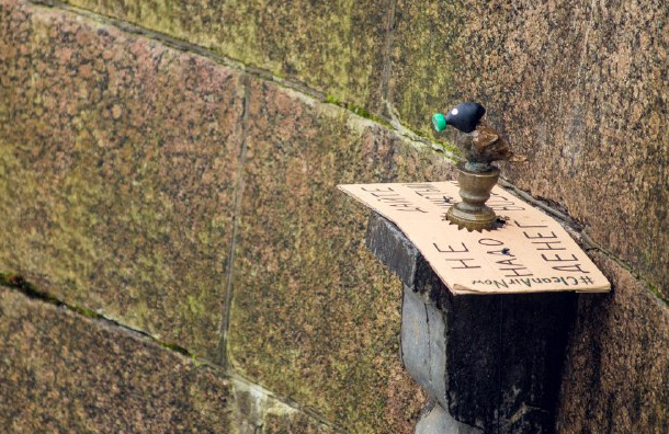 Greenpeace надел на чижика-пыжика респиратор