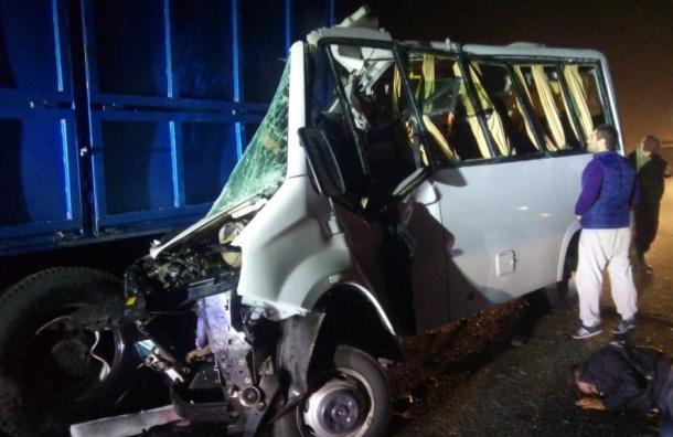 Автобус сфутбольными фанатами разбился под Ростовом, пятеро погибли