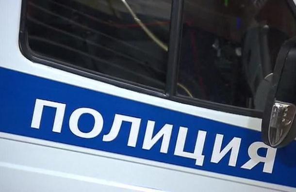 Неизвестные ввиде полицейских похитили таджика вПетербурге