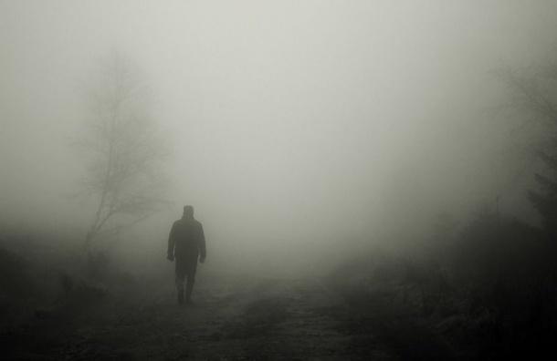 Снег, туман игололедица ждут петербуржцев вовторник