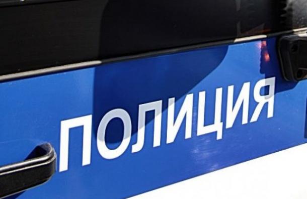 Буйный пассажир устроил дебош втроллейбусе вПетербурге