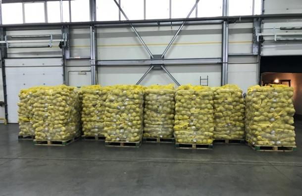 Почти 20 тонн польских овощей приговорили кказни