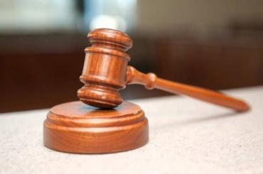 Штрафы присудили вПетербурге запикеты против ксенофобии