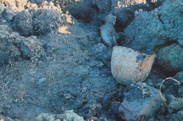 Работы набратской могиле вШушарах остановили