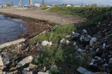 Свалку наКанонерском острове уберут к2018 году