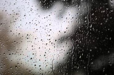 Новая неделя встретит дождем иветром