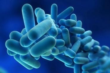 Ростуризм предупредил осмертельной инфекции вамериканском Диснейленде