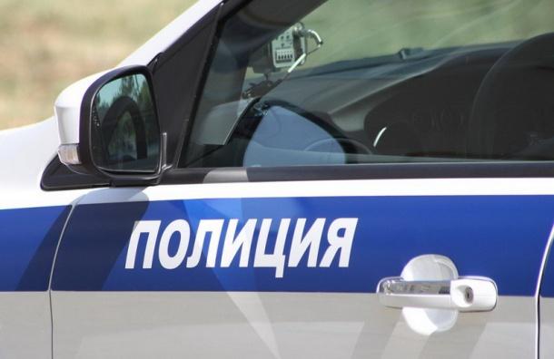 ВПетербурге бдительная пенсионерка помогла милиции раскрыть похищение студента