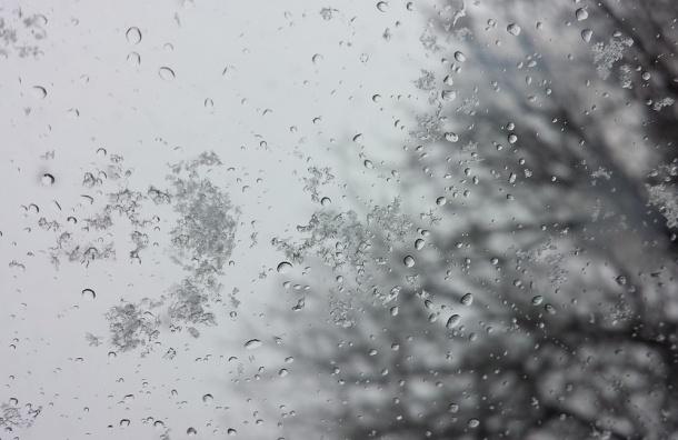 ВОрловской области ожидаются мокрый снег, дожди иветер