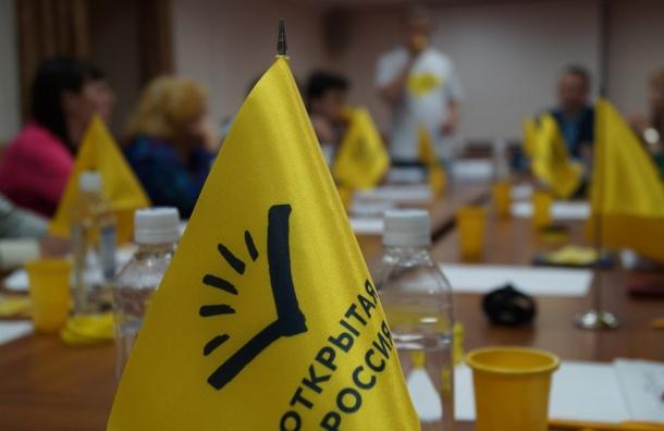 """Руководителей """"Открытой России"""", задержанных во Владивостоке, оштрафовали"""